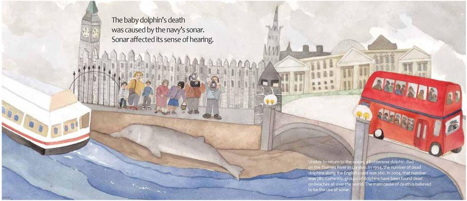 In 1994, the number of dead dolphins along the English coast was 360. In 2004, that number was 782.