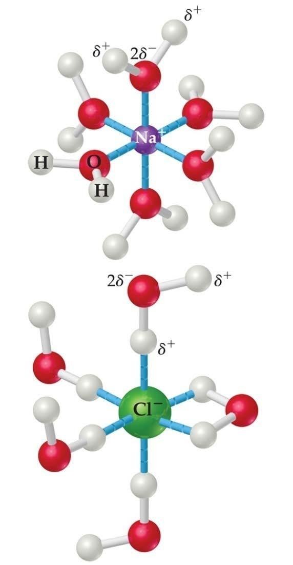 How Does a Solution Form If an ionic salt is soluble in water, it is because the
