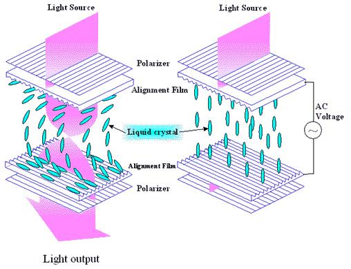 LCD : Liquid Crystal Display 액정 (Liquid Crystal)