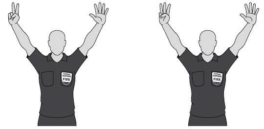 Referee and Assistant Referee Signals
