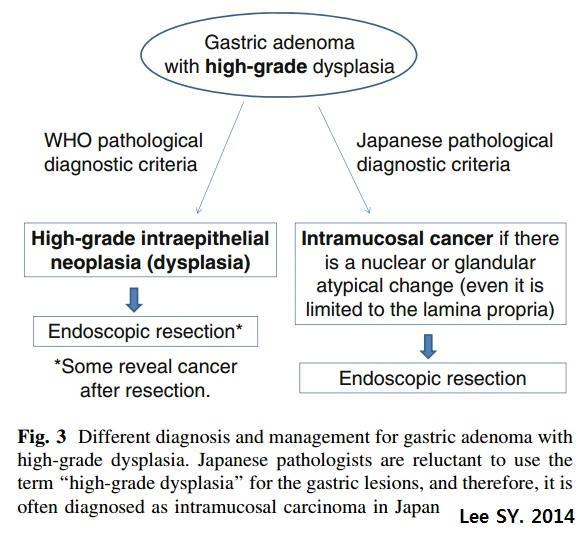patients with gastric adenomas, and some of them